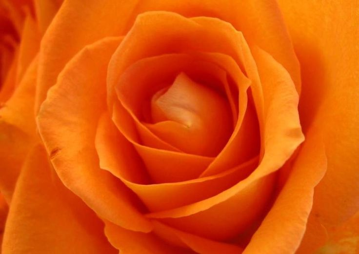 Self-love for your sacral chakra
